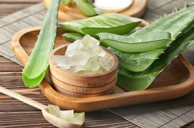 Health Advantages of Using Aloe Vera