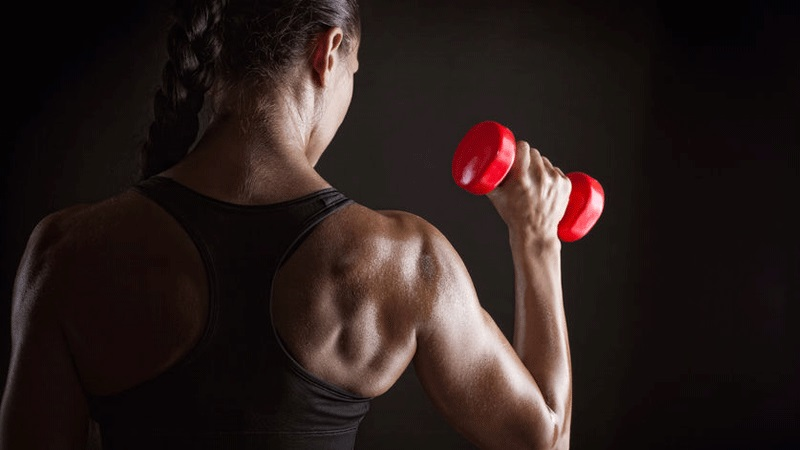 A Great Body-building Workout Program