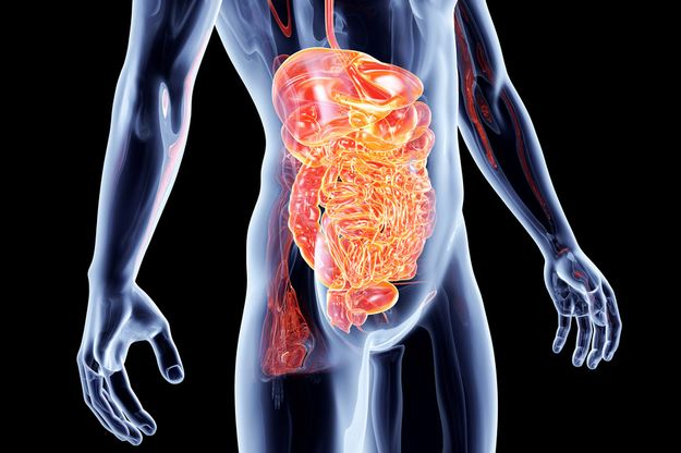 Understanding the Link Between Fatigue & Leaky Gut Syndrome