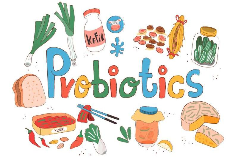 Top 10 Probiotic Containing Food Sources