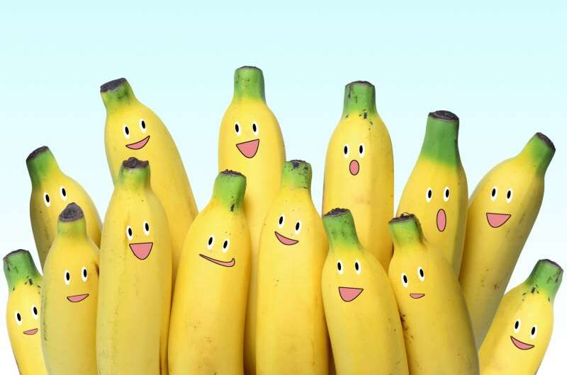 The Various Health Benefits of Bananas