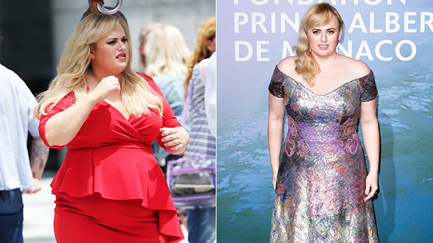 Incredible Celeb Weight Transformations